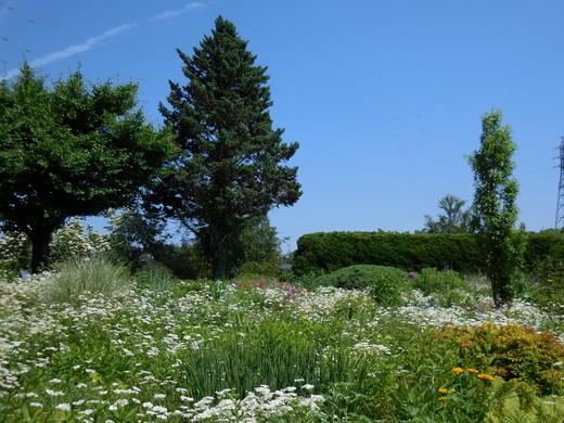 恵泉蓼科ガーデン、ミヨシ ペレニアルガーデンを訪ねて_f0139333_211135100.jpg