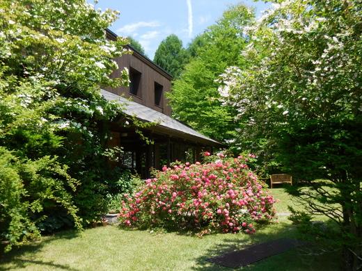 恵泉蓼科ガーデン、ミヨシ ペレニアルガーデンを訪ねて_f0139333_21173049.jpg