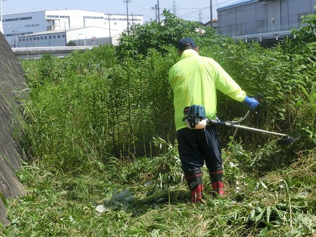 5年間愛用した草刈り機が金属疲労でオシャカに  「小潤井川友の会」の草刈り清掃_f0141310_6501246.jpg