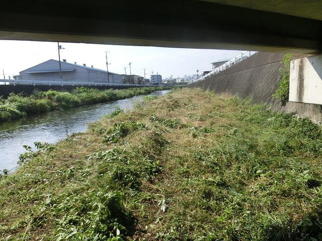 5年間愛用した草刈り機が金属疲労でオシャカに  「小潤井川友の会」の草刈り清掃_f0141310_6521898.jpg