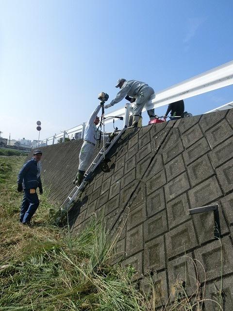 5年間愛用した草刈り機が金属疲労でオシャカに  「小潤井川友の会」の草刈り清掃_f0141310_6525666.jpg