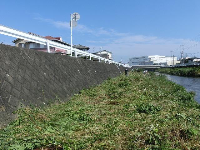 5年間愛用した草刈り機が金属疲労でオシャカに  「小潤井川友の会」の草刈り清掃_f0141310_656163.jpg