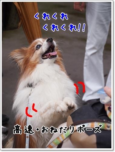 d0013149_01330522.jpg