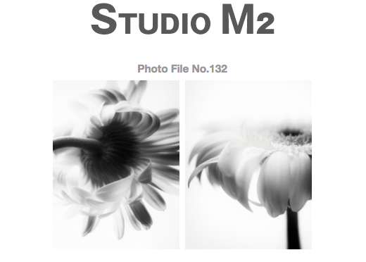 STUDIO M2 Photo File No.132 「花あそび その1」_a0002672_16501436.jpg