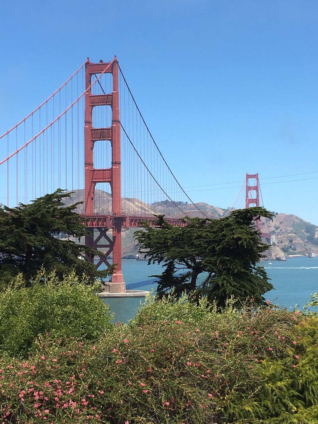 サンフランシスコ観光◎_e0261276_14132316.jpg