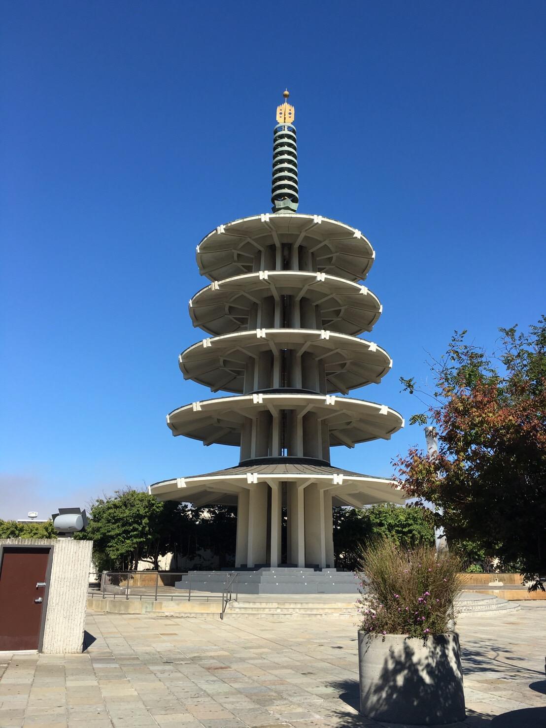 サンフランシスコ観光◎_e0261276_1451254.jpg