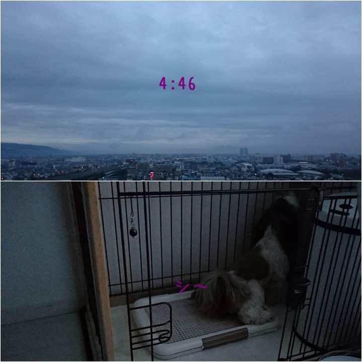 c0363378_15482999.jpg