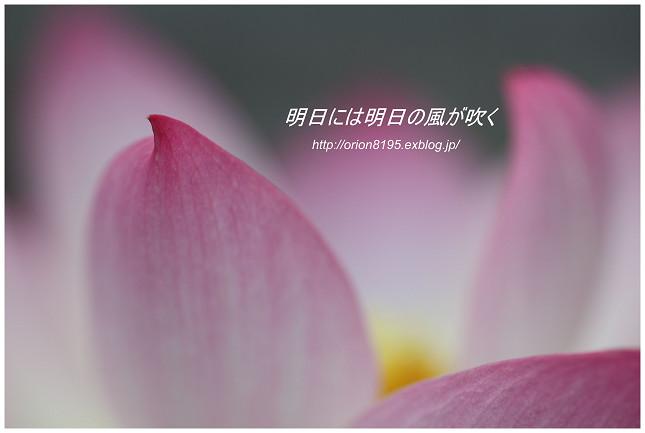 f0361079_1525781.jpg