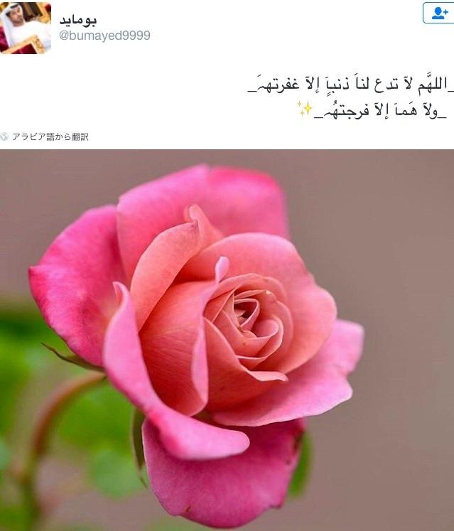 b0301400_16083380.jpg