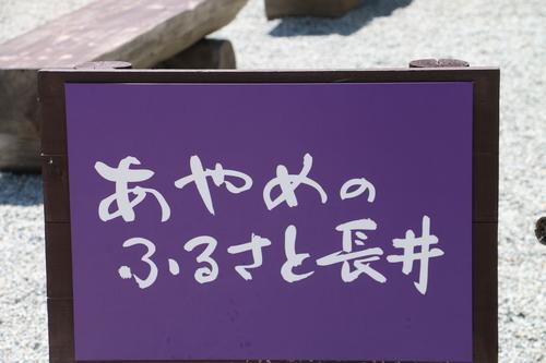 c0075701_212374.jpg