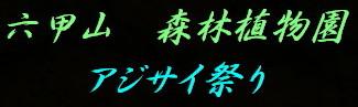 a0068035_7454076.jpg