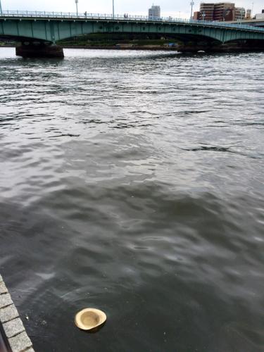 パナマを大河へ流し新たな気持ちへ_d0011635_14262615.jpg