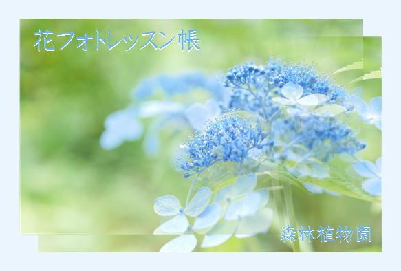 f0292335_14492603.jpg