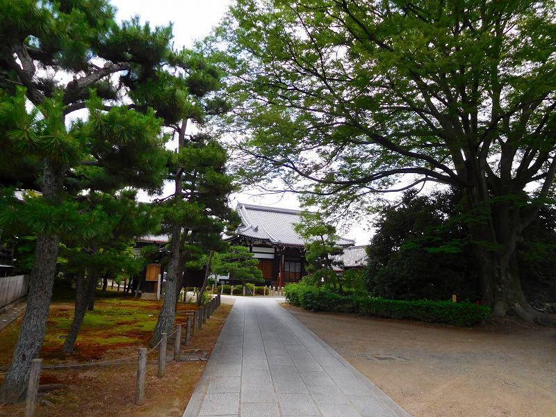 複合型本堂建築の代表例「浄福寺」20160615_e0237645_12423125.jpg