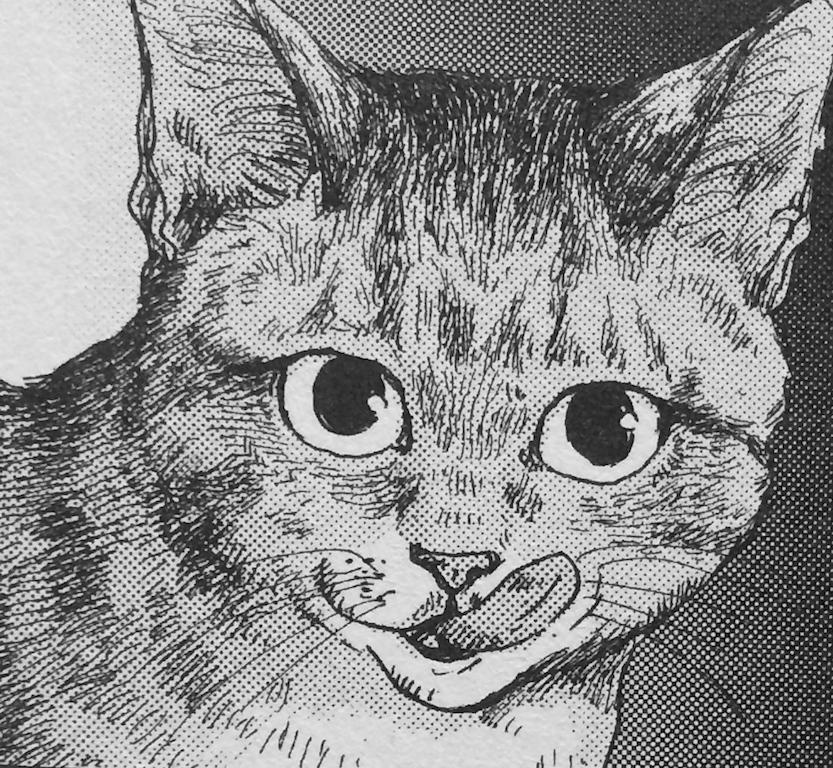 ネコマンガ嫌いの描いた猫_a0087957_7414094.jpg