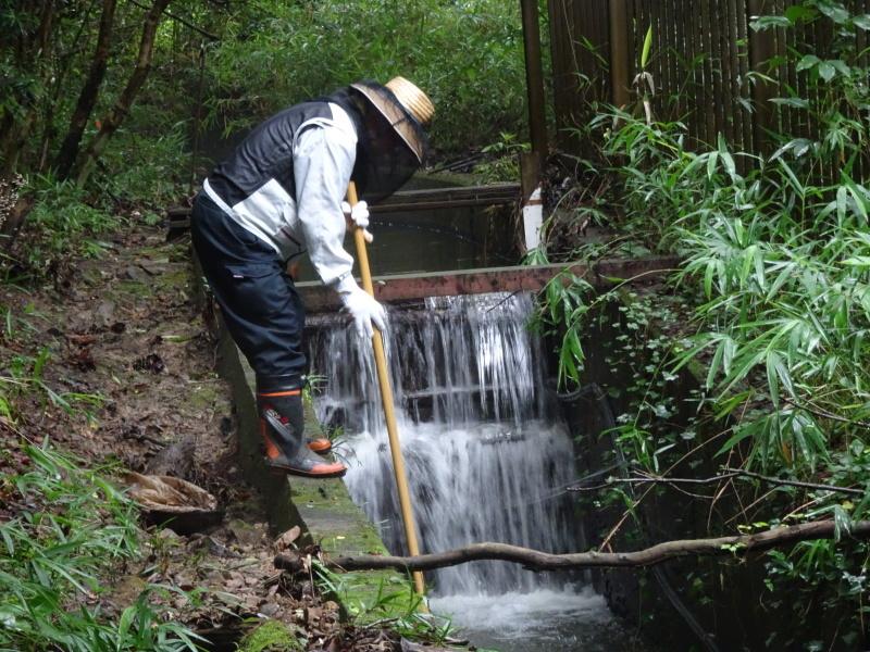 小雨の中 汚れ作業も苦にならず・・・うみべの森_c0108460_18495194.jpg