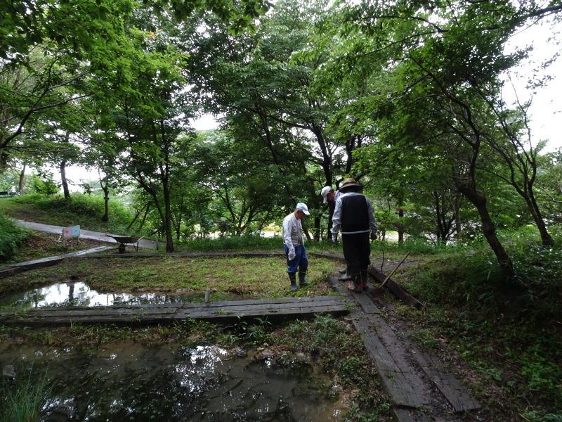 小雨の中 汚れ作業も苦にならず・・・うみべの森_c0108460_18504592.jpg