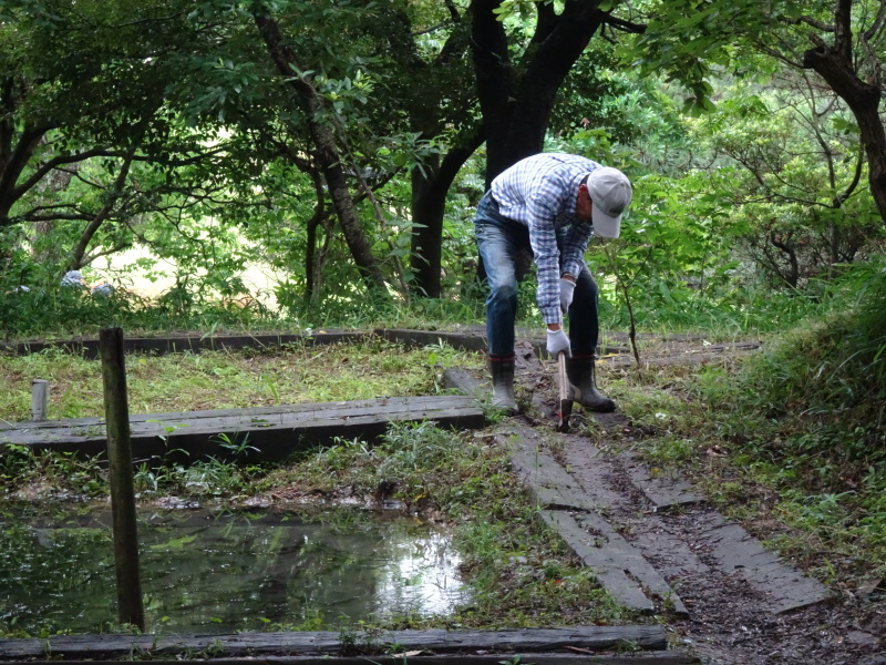 小雨の中 汚れ作業も苦にならず・・・うみべの森_c0108460_18505103.jpg