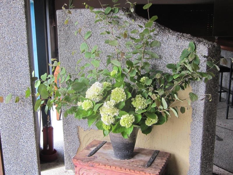 梅雨時の花々_d0177560_1501859.jpg