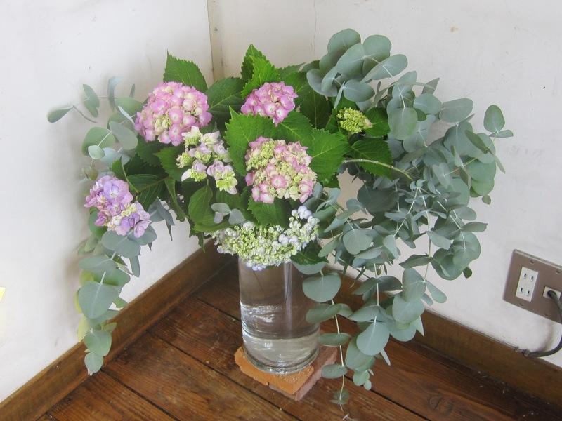 梅雨時の花々_d0177560_151118.jpg