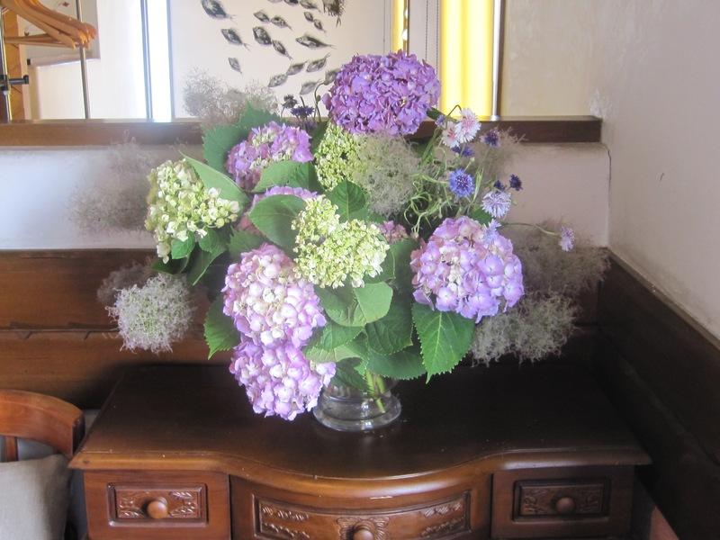 梅雨時の花々_d0177560_1511255.jpg