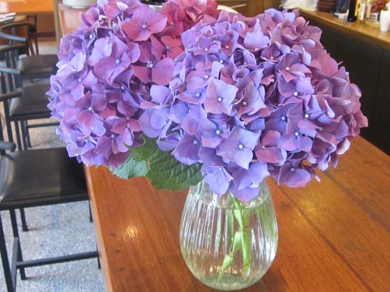 梅雨時の花々_d0177560_1512415.jpg