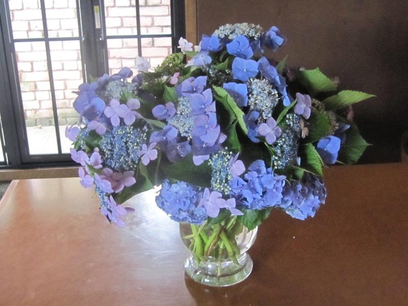 梅雨時の花々_d0177560_1513439.jpg