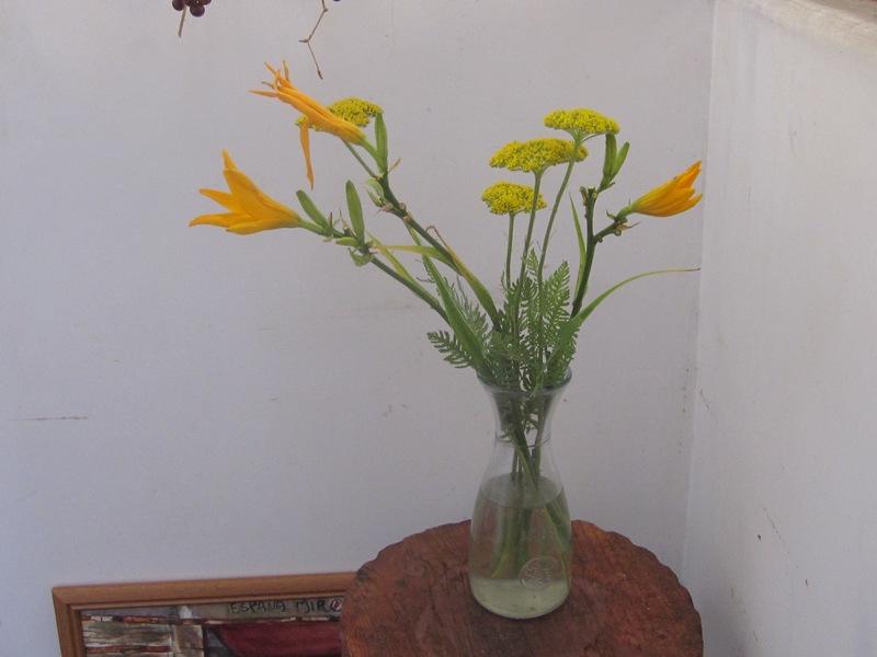 梅雨時の花々_d0177560_152270.jpg