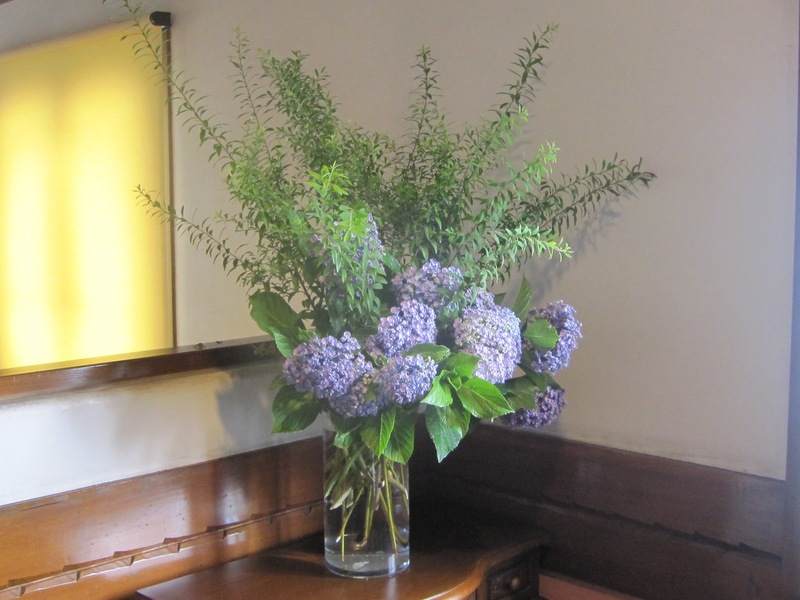 梅雨時の花々_d0177560_1525767.jpg