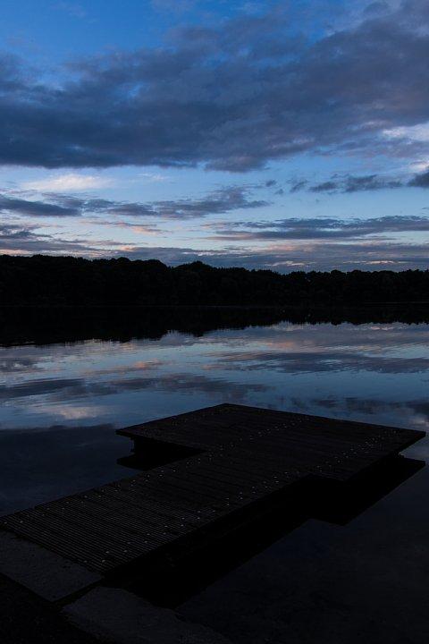 午後9時の人工池散策_d0353489_21535637.jpg