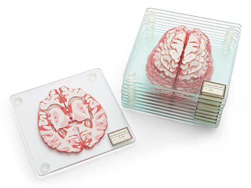 Brain Specimen Coasters_e0118156_1503717.jpg