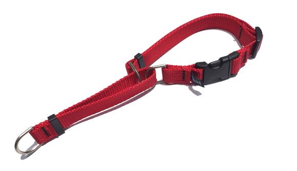 CETACEA Soft Martingale Dog Collar シターシャ ソフト マーチンゲールカラー _d0217958_1215647.jpg