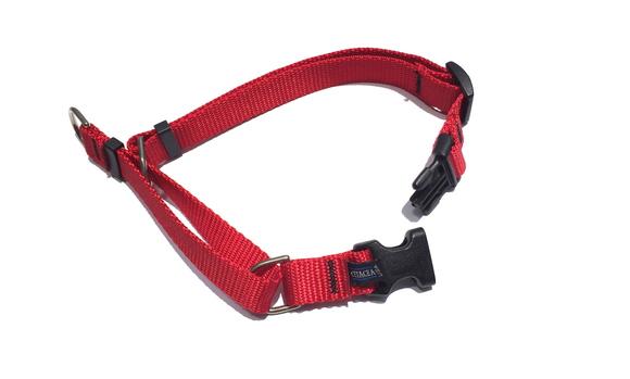 CETACEA Soft Martingale Dog Collar シターシャ ソフト マーチンゲールカラー _d0217958_12183663.jpg