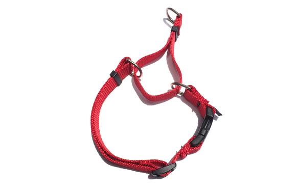 CETACEA Soft Martingale Dog Collar シターシャ ソフト マーチンゲールカラー _d0217958_1219522.jpg