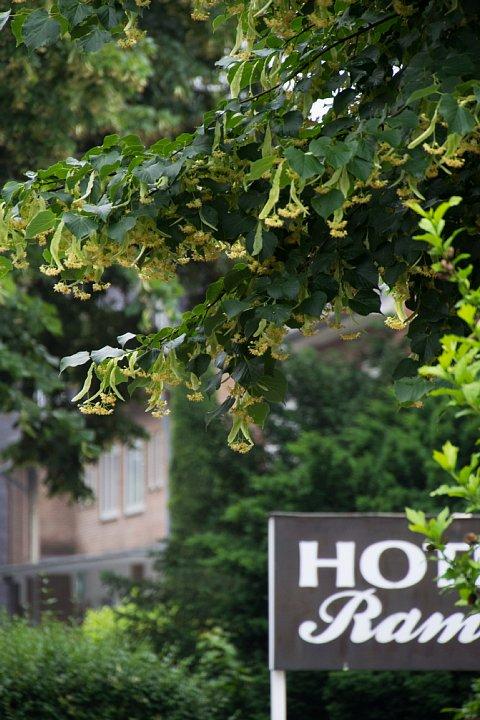 朝食が美味しいDuisburgの宿_d0353489_21311080.jpg