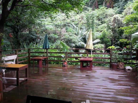 梅雨休み~~_d0103296_23003948.jpg