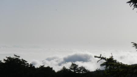 雲海の朝_e0120896_06362273.jpg