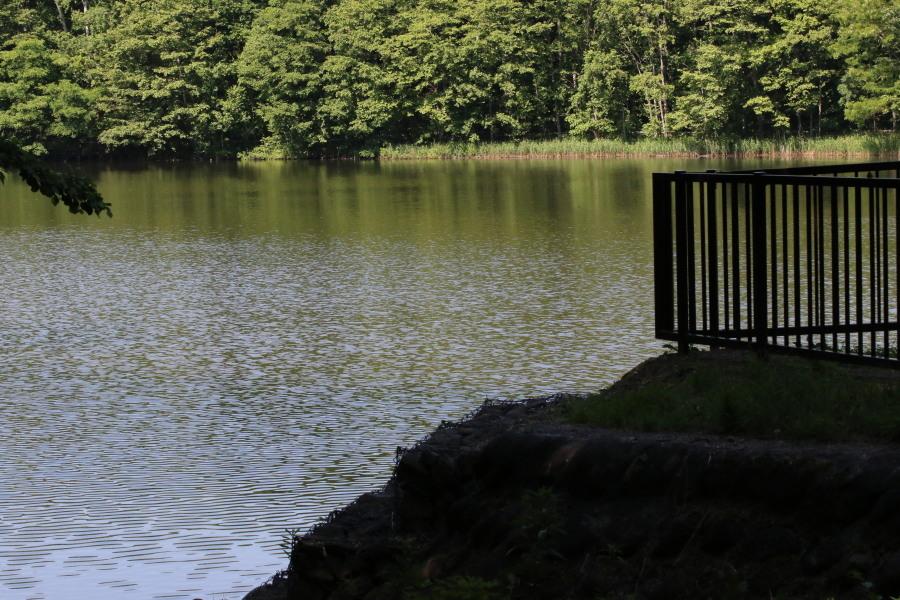 西岡公園散策_c0360399_21171189.jpg