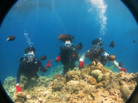 7月2日最高水納島と激混み青の洞窟_c0070933_23564780.jpg