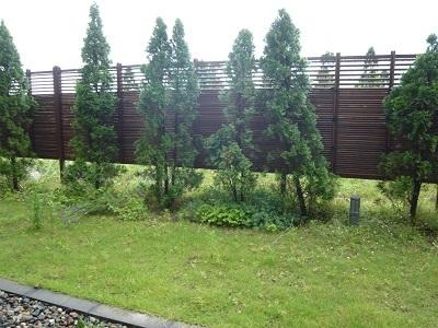 充電の2日間 雨のカーブドッチ_c0369433_09091649.jpg