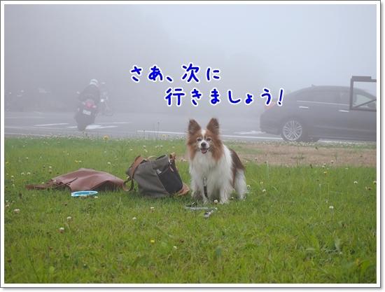 d0013149_23010831.jpg