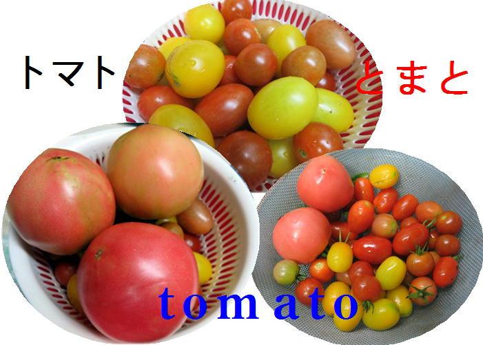 f0003174_1564123.jpg