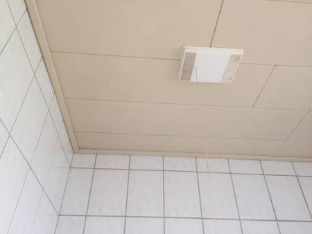 バスルームの天井リフォーム_b0253226_23444538.jpg
