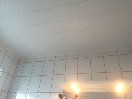 バスルームの天井リフォーム_b0253226_23454112.jpg