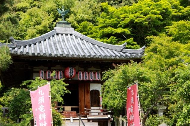 【二尊院】京都旅行 - 14 -_f0348831_19054478.jpg