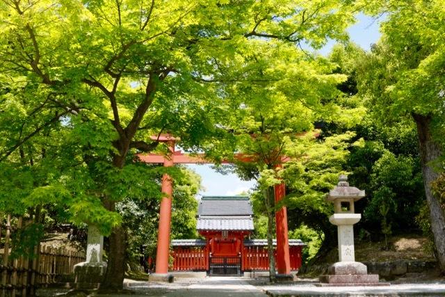 【天龍寺】京都旅行 - 16 -_f0348831_21175596.jpg