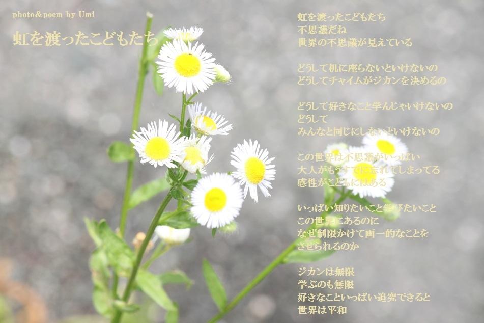 f0351844_23021032.jpg