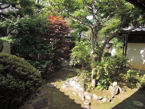 伊丹から奈良へ^^_a0211886_22572319.jpg