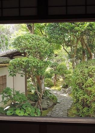 伊丹から奈良へ^^_a0211886_23002015.jpg