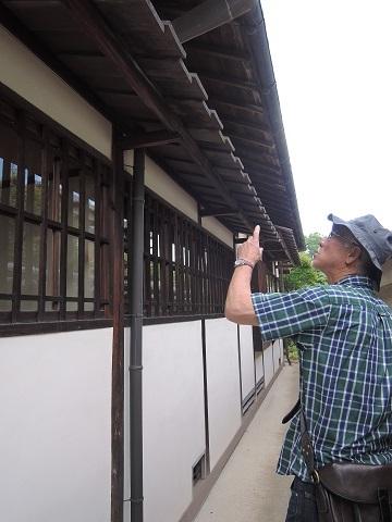 伊丹から奈良へ^^_a0211886_23015688.jpg